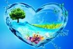 22 марта всемирный день водных ресурсов. Интересные факты о воде.
